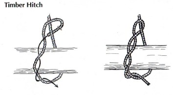 TImber Hitch Drawing