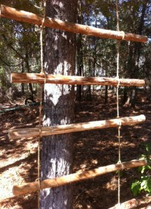 Rope Ladder Attached to a Tree