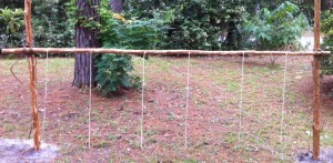 Horizontal Hitching Post Lashed Between Two 6' Uprights