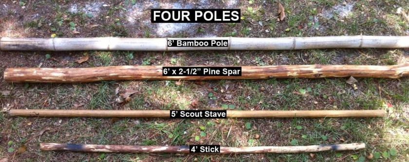 Bamboo Pole, Pine Spar, Scout Stave, Stick