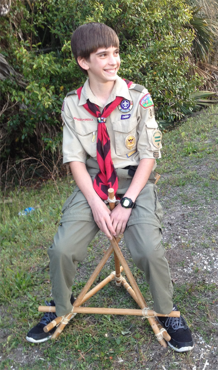 Seat Brown Scout