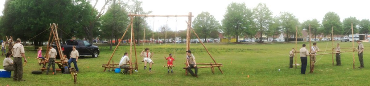 SCOUT PIONEERING
